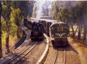 Petit train du Yunnan