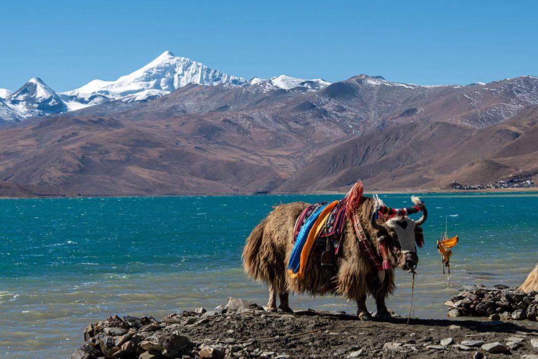Tibet et Yunnan-1050X701