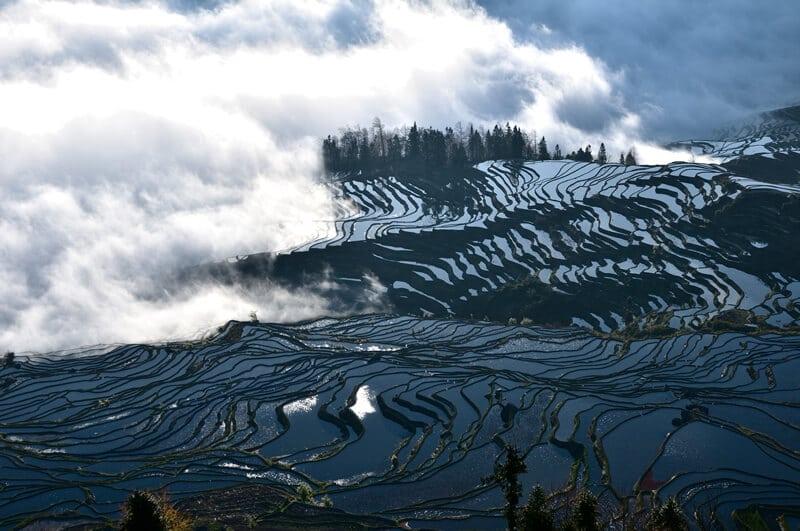 Rizieres en terrasse des Hani Yuanyang Chine